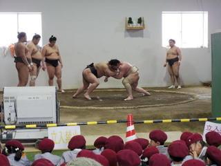 お相撲さん見学をしました