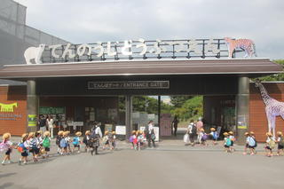秋の遠足で天王寺動物園へ行きました